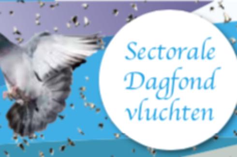 De winnaars van de Sectorale Dagfondvluchten Argenton, Châteauroux en Lorris